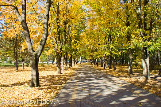 Ботанический сад Краснодара. Золотая осень.